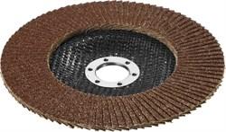 """Шлифовальный круг Stayer """"PROFI"""" лепестковый, торцевой, 125мм 40P 36581-125-040 - фото 90074"""