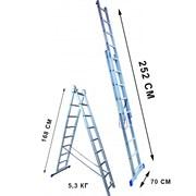 Лестница двухсекционная Стандарт 6 ступеней