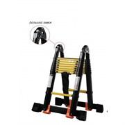 Лестница-стремянка телескопическая Профи 2,5м/5м 8 ступеней